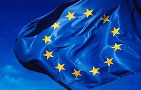 EU Grantovi – Kako Do Bespovratnih Sredstava Za Privatne Firme I Javni Sektor